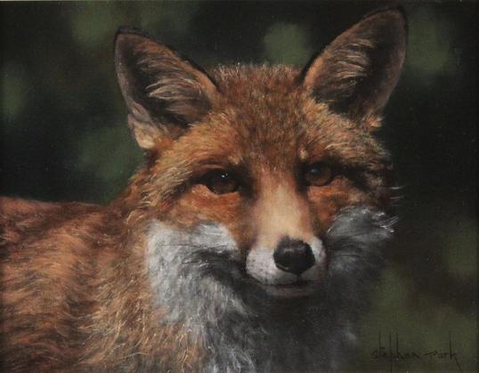 Stephen Park, Original oil painting on panel, Fox