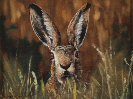 Stephen Park, Original oil painting on panel, Brown Hare