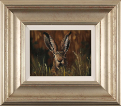 Stephen Park, Original oil painting on panel, Brown Hare