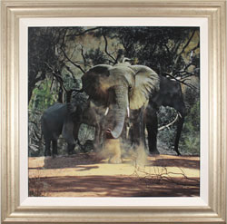 Stephen Park, Original oil painting on panel, Elephants Large image. Click to enlarge