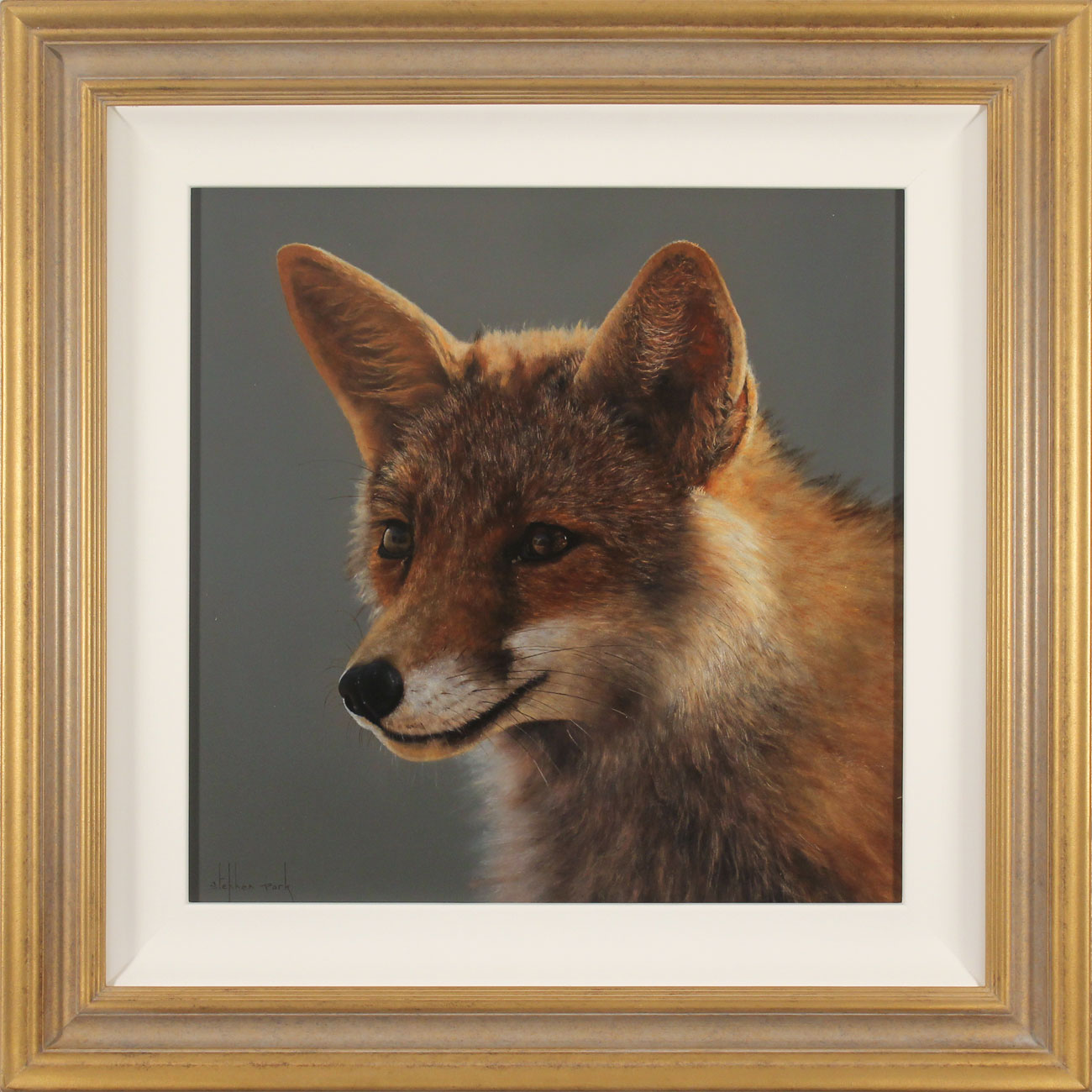 Stephen Park, Original oil painting on panel, Fox, click to enlarge