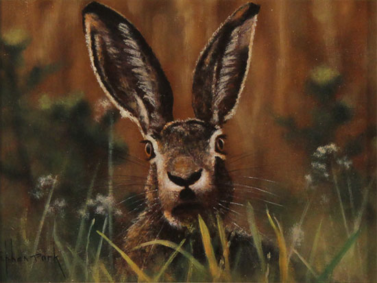 Stephen Park, Original oil painting on panel, Hare Without frame image. Click to enlarge