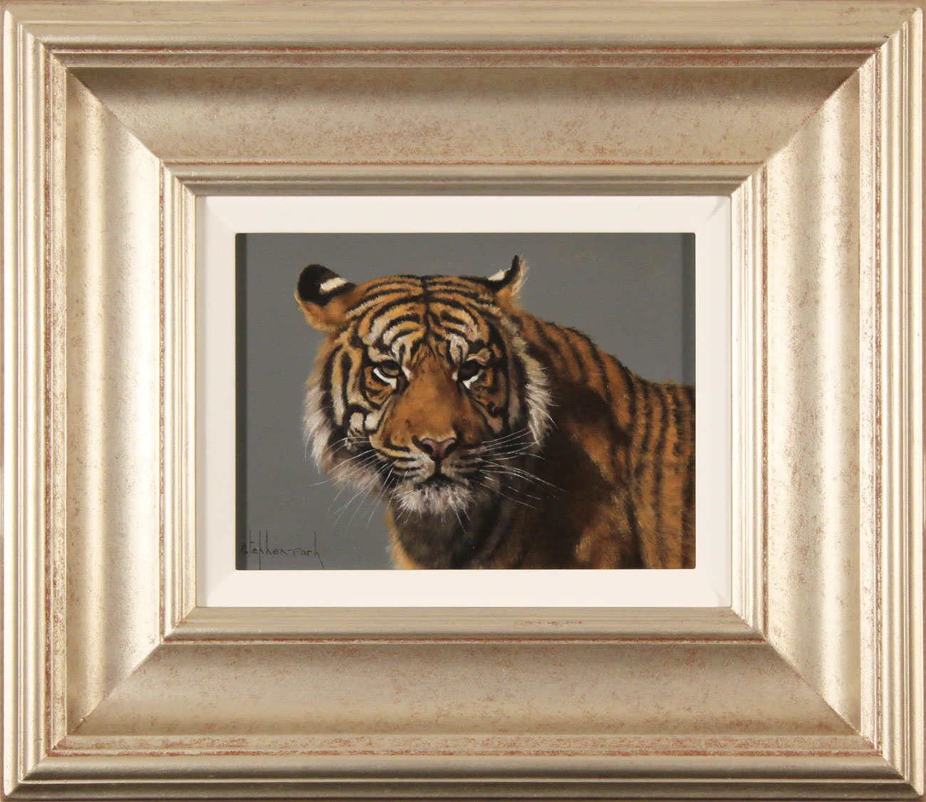 Stephen Park, Original oil painting on panel, Tiger, click to enlarge