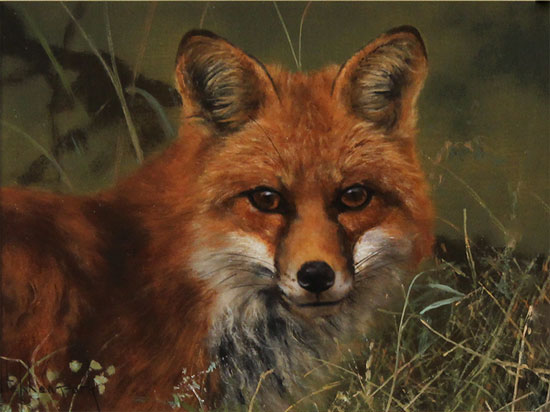 Stephen Park, Original oil painting on panel, Fox Without frame image. Click to enlarge
