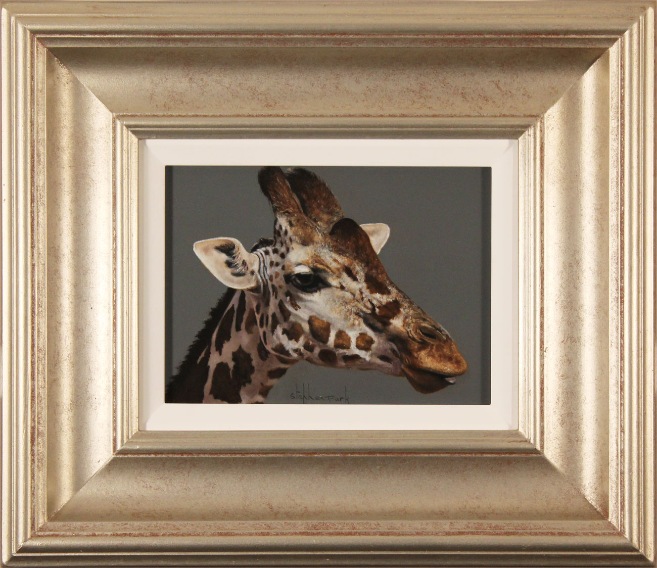 Stephen Park, Original oil painting on panel, Giraffe. Click to enlarge