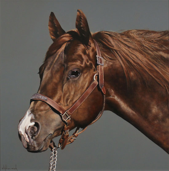 Stephen Park, Original oil painting on panel, Thoroughbred Stallion No frame image. Click to enlarge