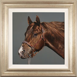 Stephen Park, Original oil painting on panel, Thoroughbred Stallion