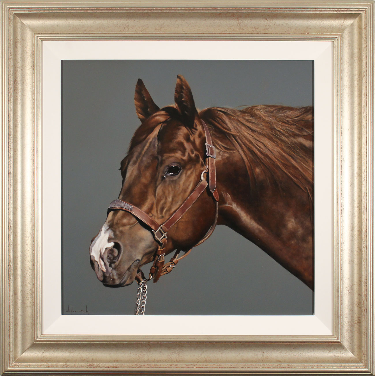 Stephen Park, Original oil painting on panel, Thoroughbred Stallion, click to enlarge