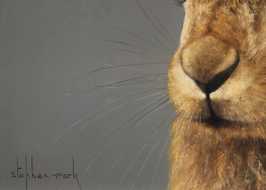 Stephen Park, Original oil painting on panel, Hare Signature image. Click to enlarge