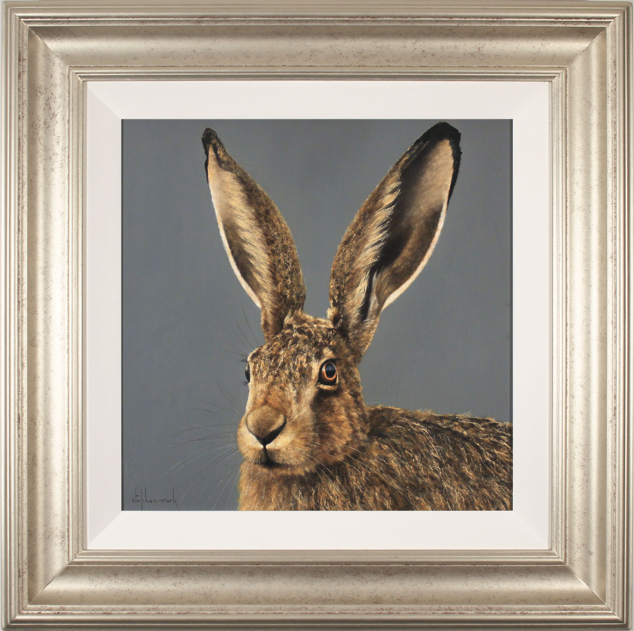 Stephen Park, Original oil painting on panel, Hare, click to enlarge