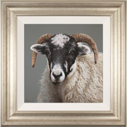 Stephen Park, Original oil painting on panel, Ewe