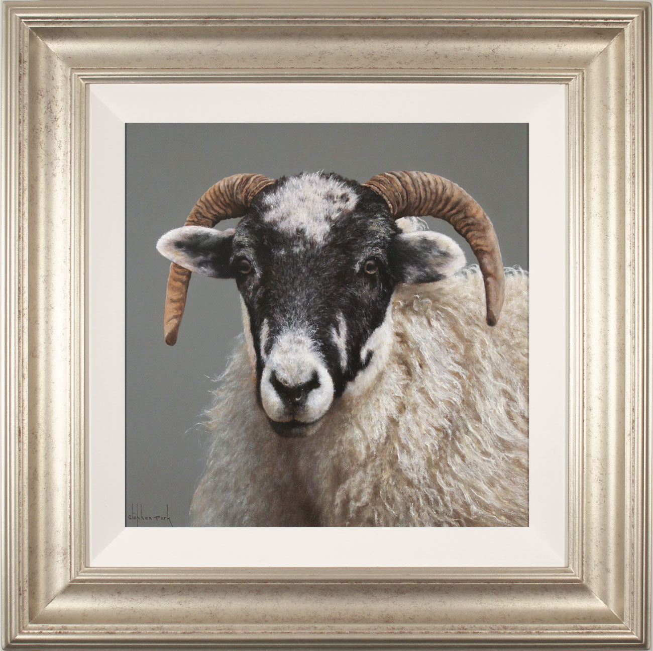Stephen Park, Original oil painting on panel, Ewe, click to enlarge