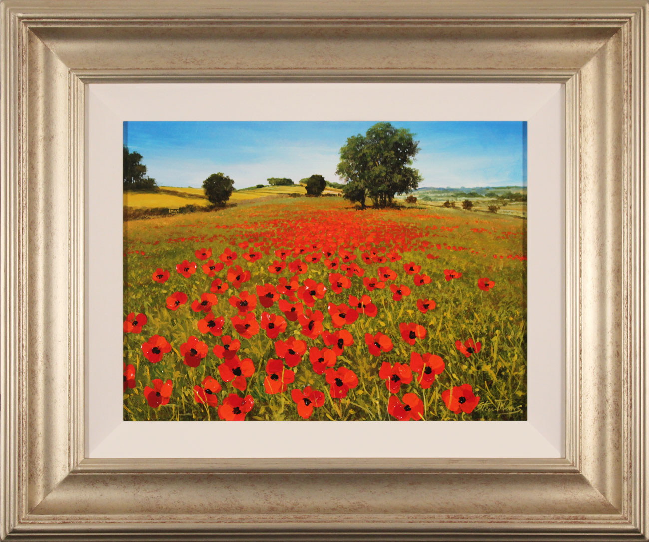 Steve Thoms, Original oil painting on panel, Poppy Fields, Yorkshire Wolds, click to enlarge