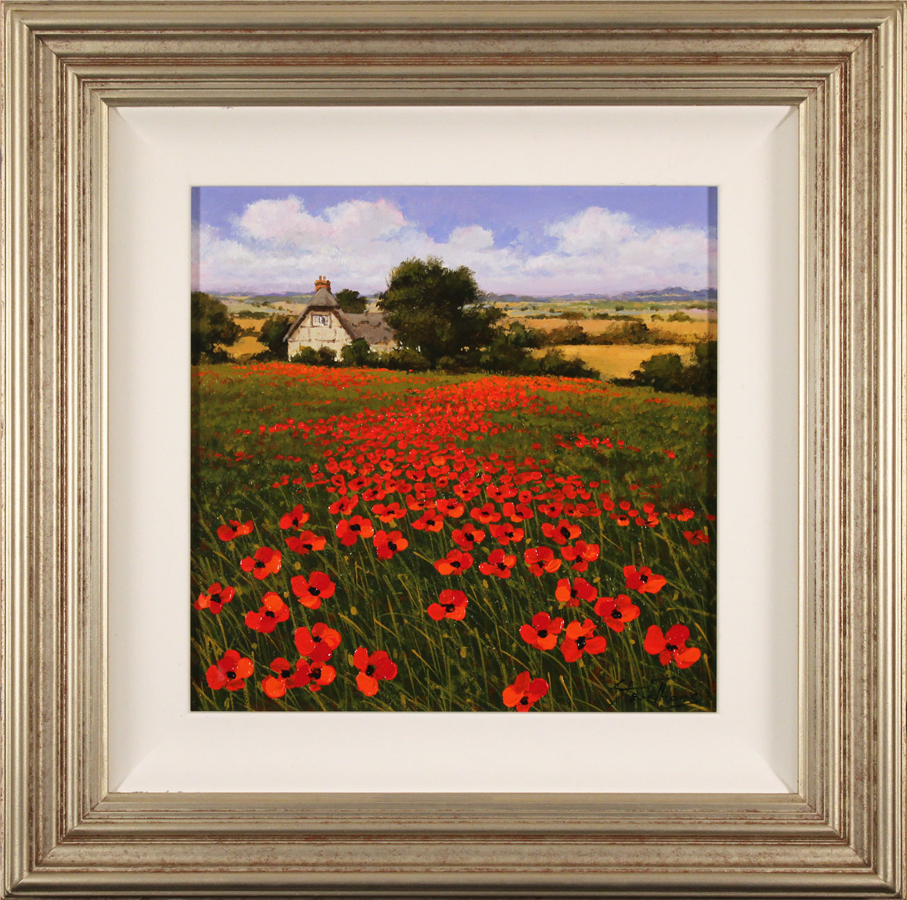 Steve Thoms, Original oil painting on panel, Yorkshire Poppies, click to enlarge