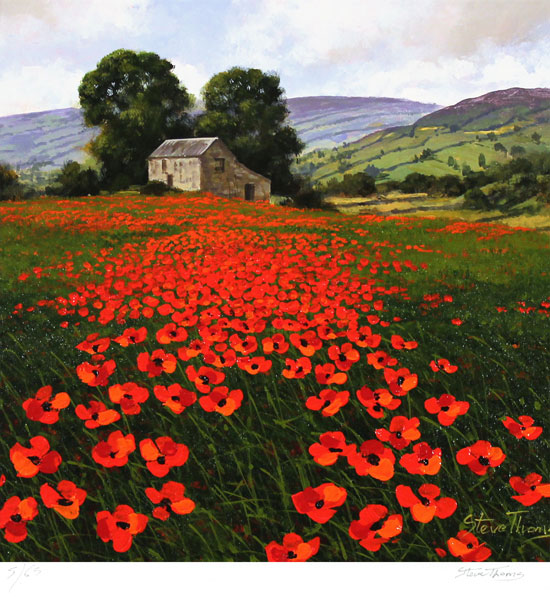 Steve Thoms, Signed limited edition print, Yorkshire Poppies Without frame image. Click to enlarge