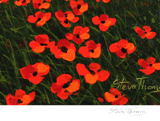 Steve Thoms, Signed limited edition print, Yorkshire Poppies Signature image. Click to enlarge