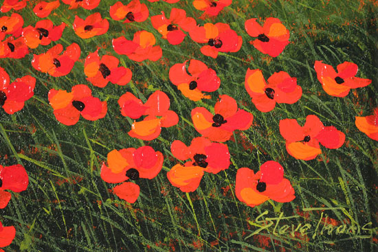 Steve Thoms, Original oil painting on panel, Yorkshire Poppies Signature image. Click to enlarge