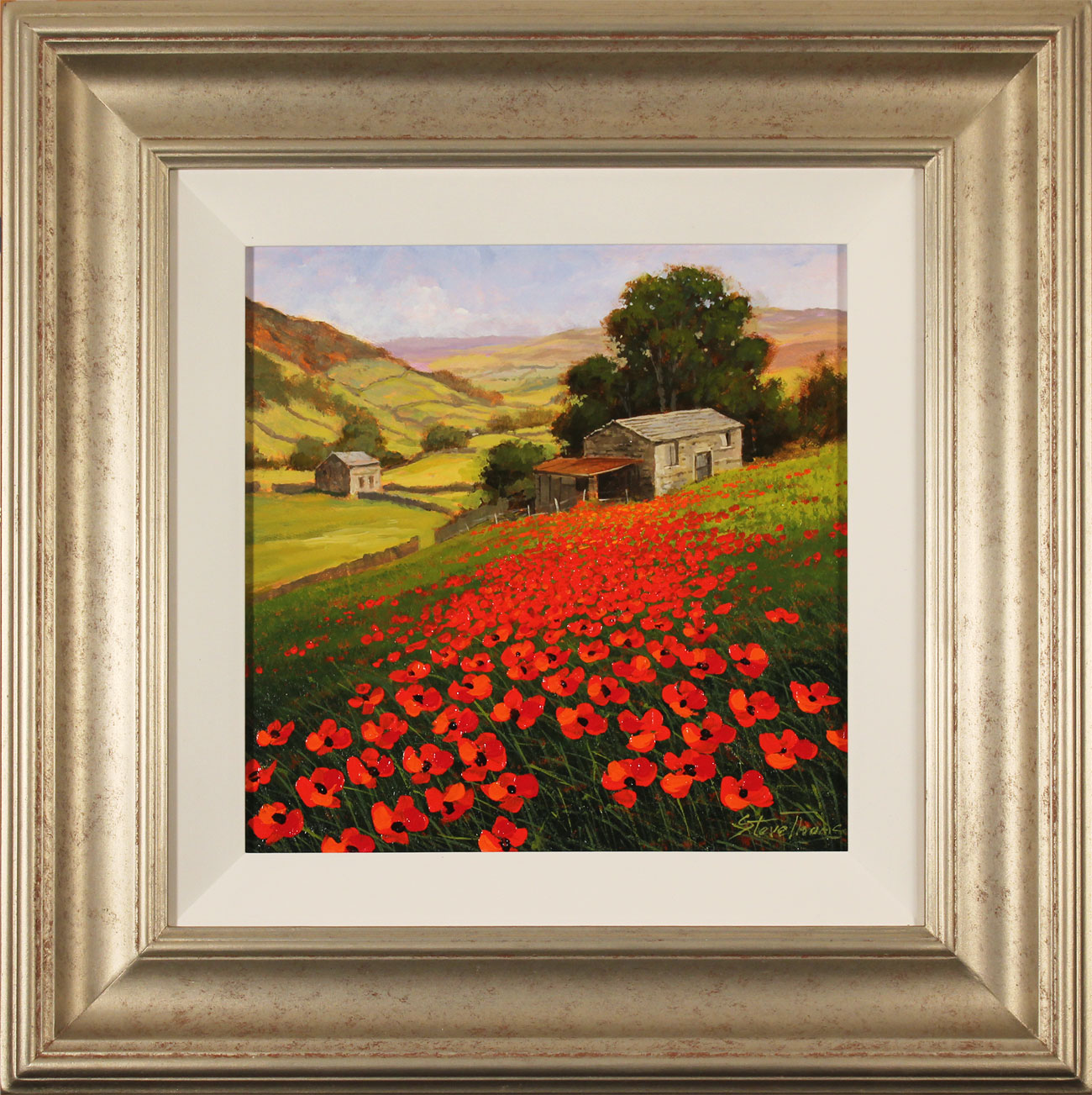 Steve Thoms, Original oil painting on panel, Yorkshire Poppies. Click to enlarge