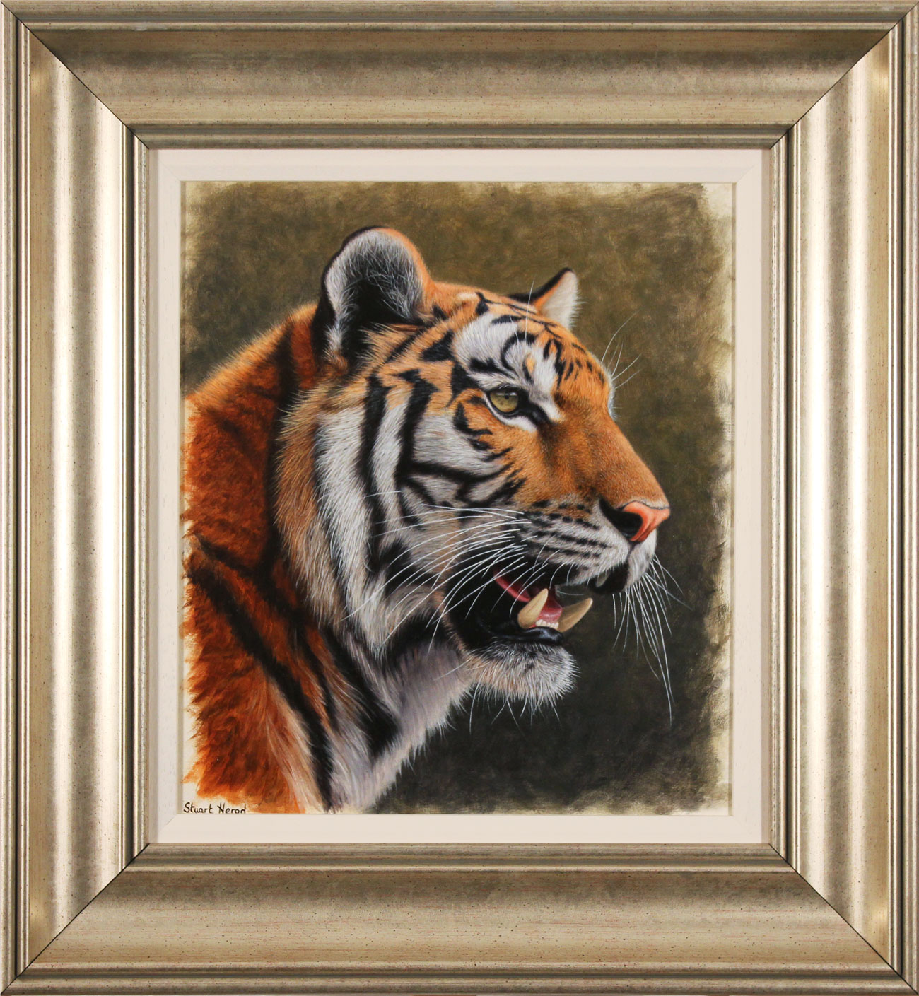 Stuart Herod, Original oil painting on panel, Tiger, click to enlarge