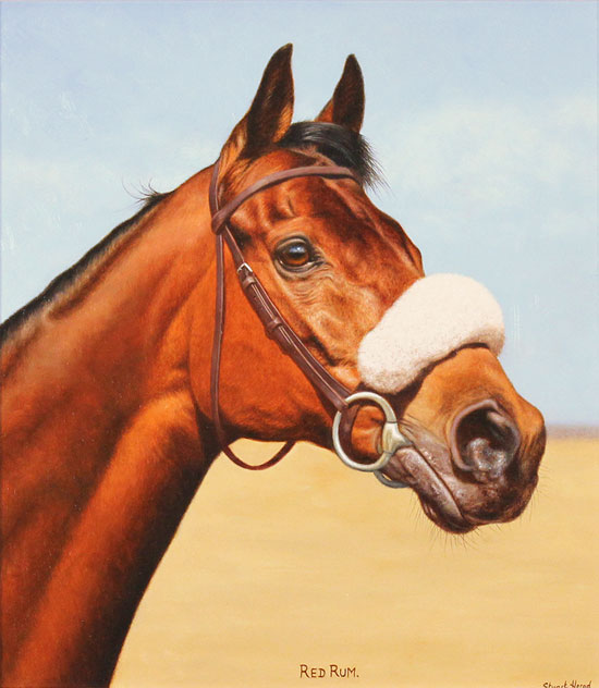 Stuart Herod, Original oil painting on panel, Red Rum