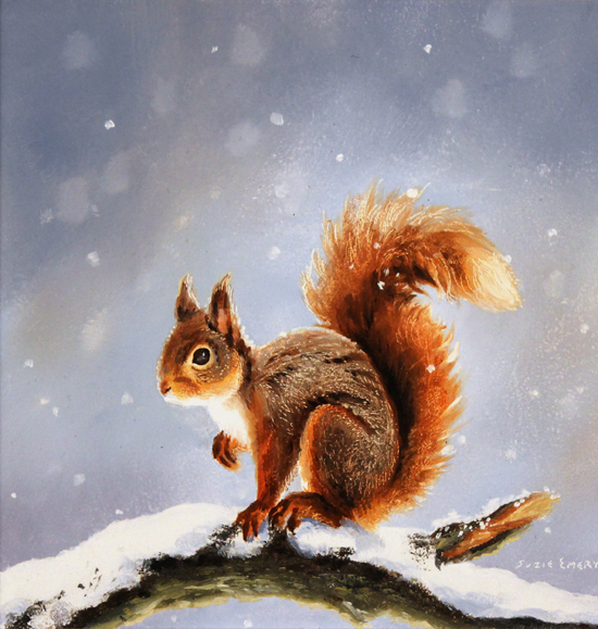 Suzie Emery, Original acrylic painting on board, Red Squirrel