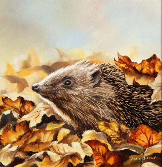 Suzie Emery, Original acrylic painting on board, Hedgehog