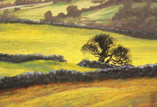 Suzie Emery, Original acrylic painting on board, Swaledale Sunset Signature image. Click to enlarge