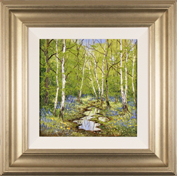 Terry Evans, Original oil painting on canvas, Silver Birches in Spring