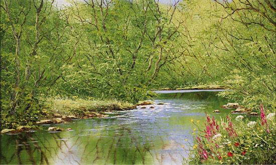 Terry Evans, Original oil painting on canvas, Midsummer by the River