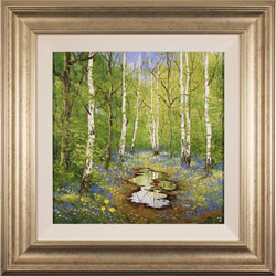 Terry Evans, Original oil painting on panel, Birch and Bluebell