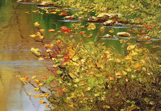 Terry Evans, Original oil painting on canvas, Autumn Reflections