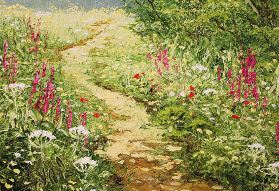Terry Evans, Original oil painting on canvas, Woodland Walk Signature image. Click to enlarge