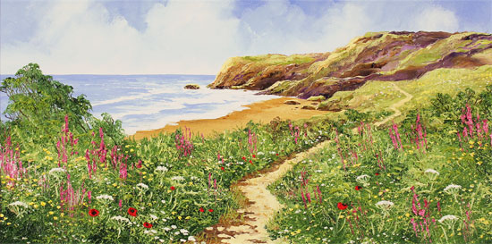 Terry Evans, Original oil painting on canvas, Coastal Walk Without frame image. Click to enlarge