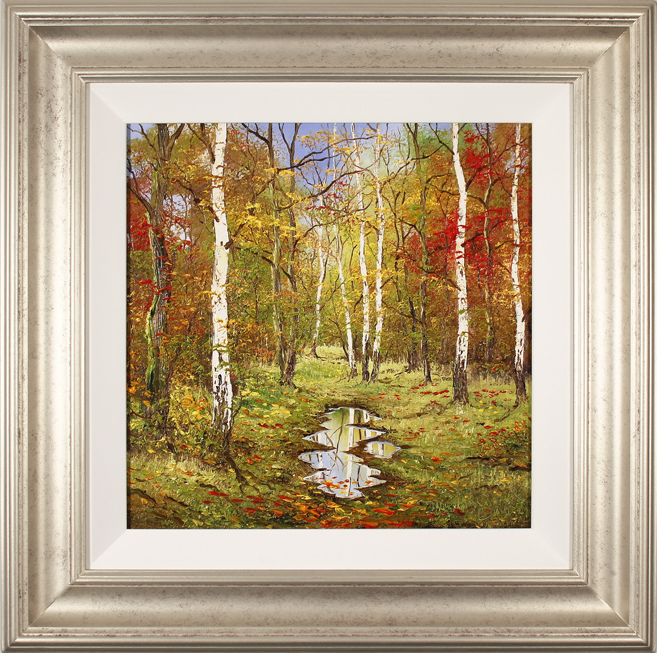 Terry Evans, Original oil painting on canvas, Autumn Birch Wood , click to enlarge
