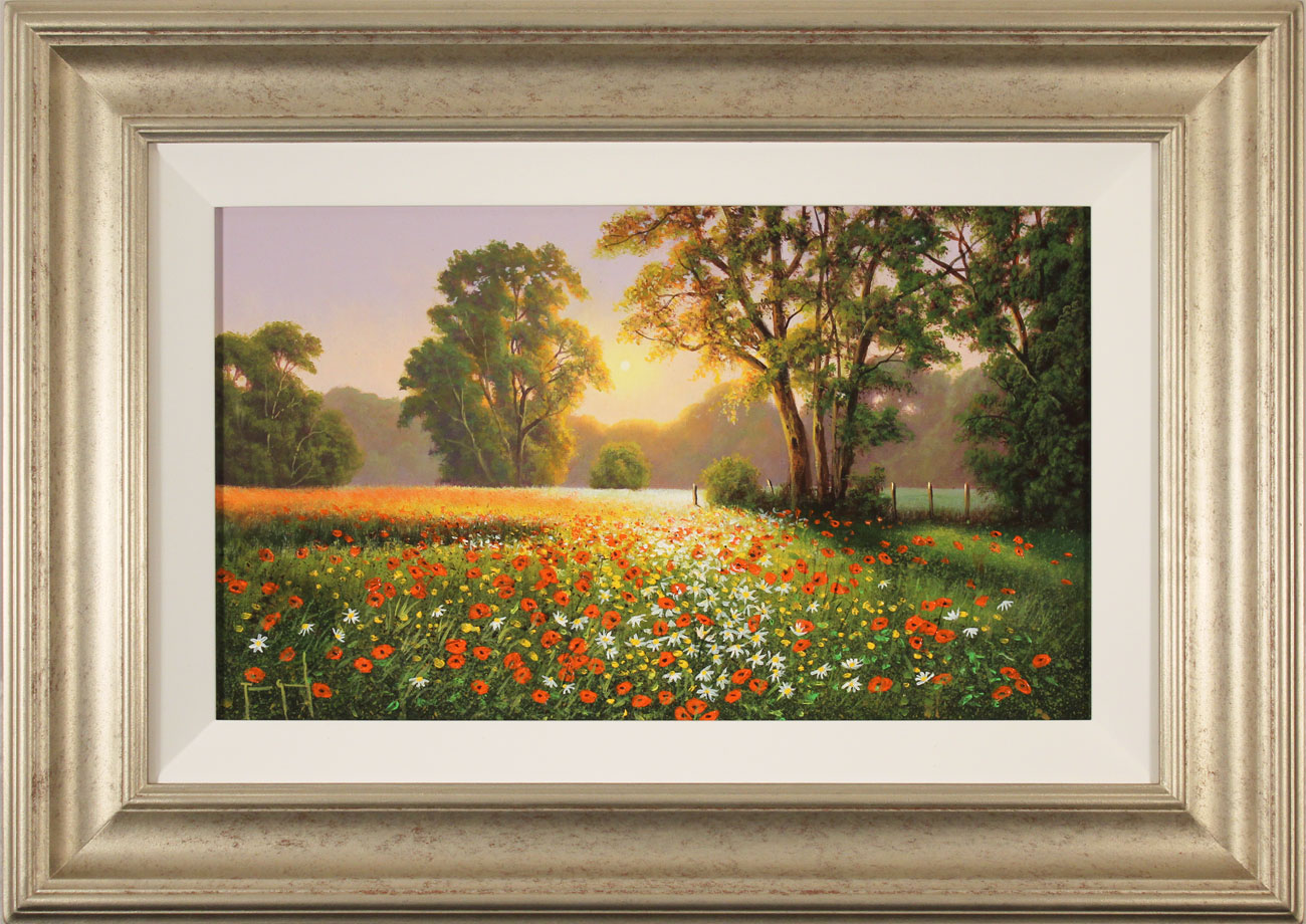 Terry Grundy, Original oil painting on panel, Poppy Field at Sunset. Click to enlarge
