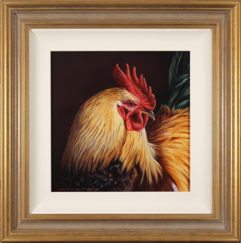 Wayne Westwood, Original oil painting on panel, Cockerel. Click to enlarge