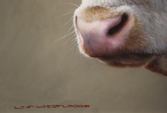 Wayne Westwood, Original oil painting on panel, Hereford Bull Signature image. Click to enlarge