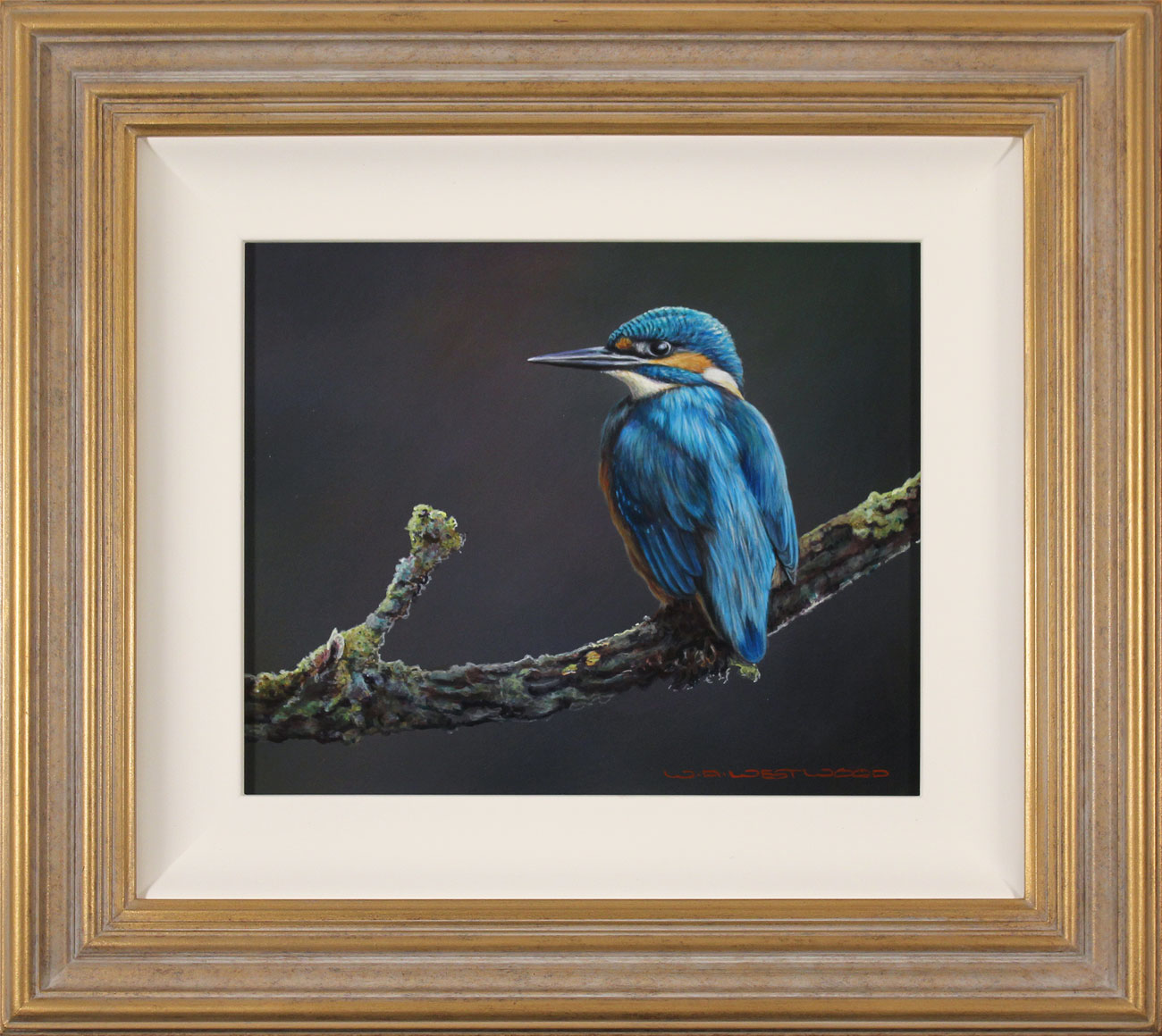 Wayne Westwood, Original oil painting on panel, Kingfisher. Click to enlarge