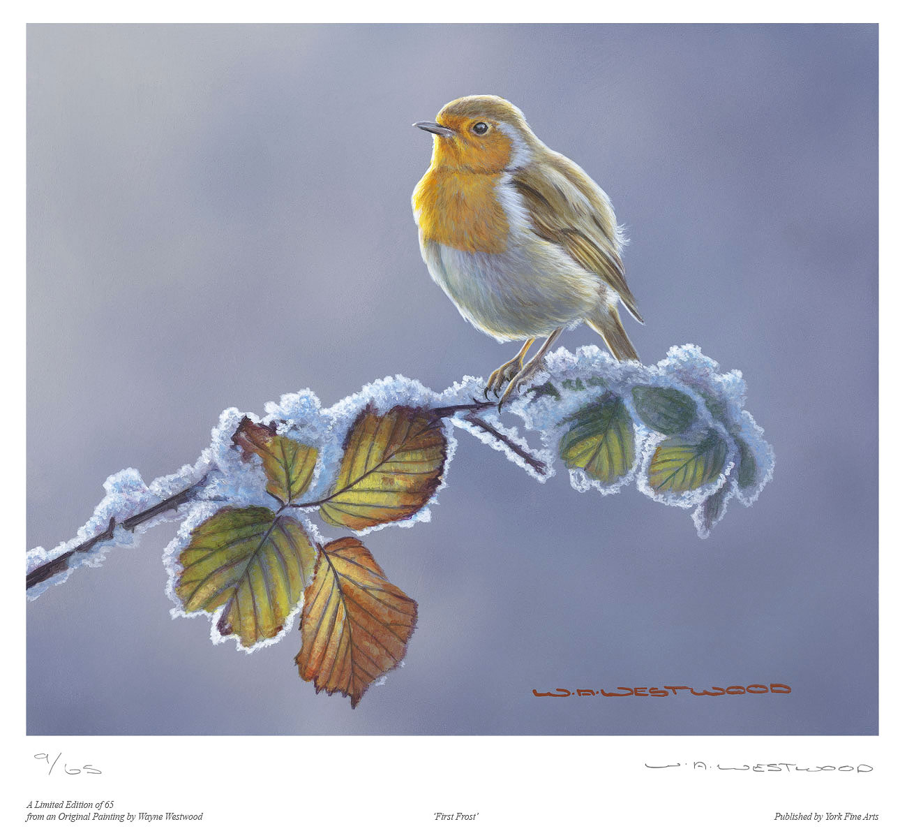 Wayne Westwood, Signed limited edition print, First Frost, click to enlarge