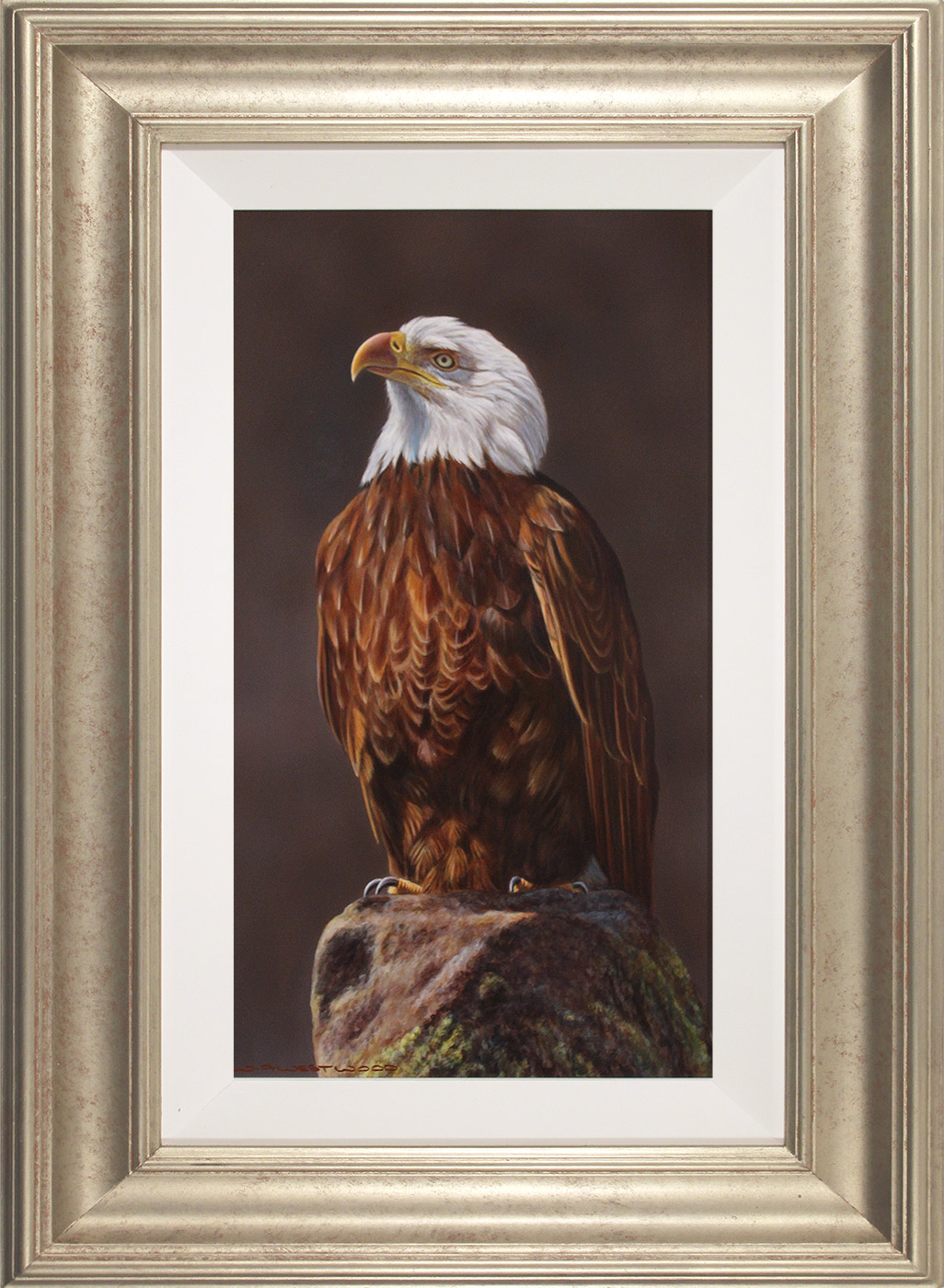 Wayne Westwood, Original oil painting on panel, American Bald Eagle , click to enlarge