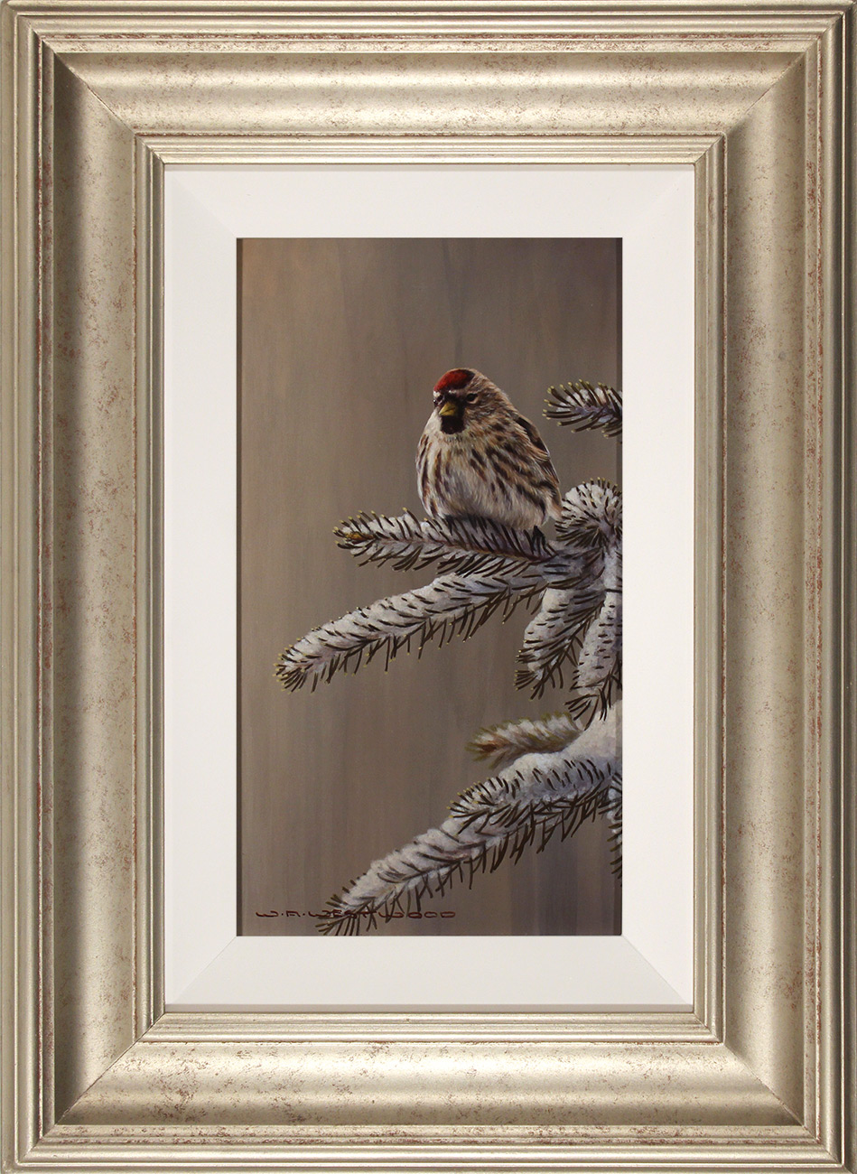 Wayne Westwood, Original oil painting on panel, Forest Frost, Redpoll in Winter , click to enlarge
