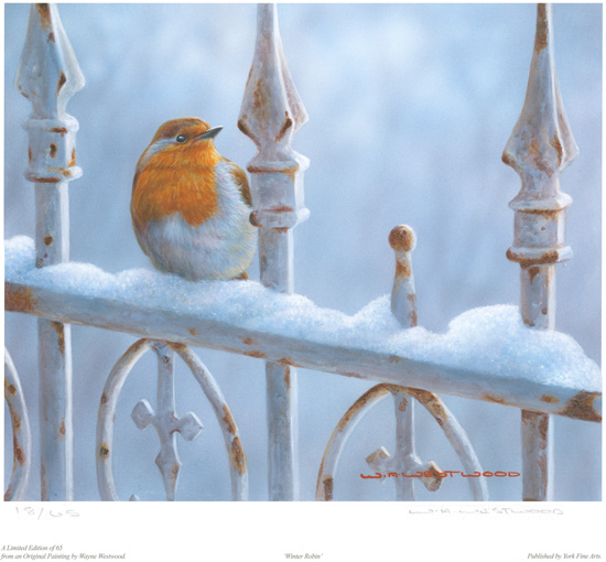 Wayne Westwood, Signed limited edition print, Winter Robin Without frame image. Click to enlarge