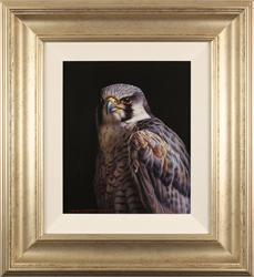 Wayne Westwood, British Wildlife Artist at York Fine Arts