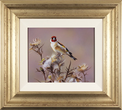 Wayne Westwood, Original oil painting on panel, Goldfinch