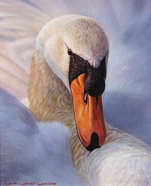 Wayne Westwood, Original oil painting on panel, Swan