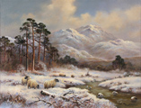 Wendy Reeves, Original oil painting on canvas, Winter in the Scottish Highlands