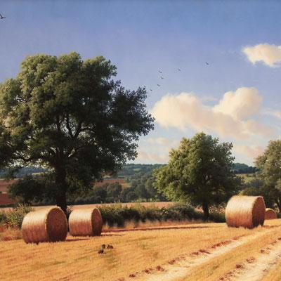 Daniel Van Der Putten, Fields of South Hiendley, Yorkshire, Original oil painting on panel