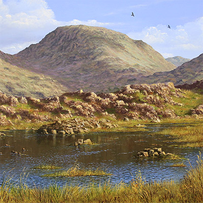 Edward Hersey, Summer's Glory, Innominate Tarn , Original oil painting on panel