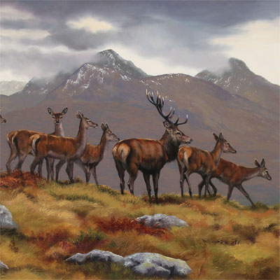 Natalie Stutely, Stag and Hinds, Scottish Highlands, Original oil painting on panel