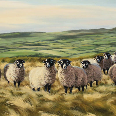 Natalie Stutely, Swaledale Flock in the Cleveland Way, Original oil painting on panel